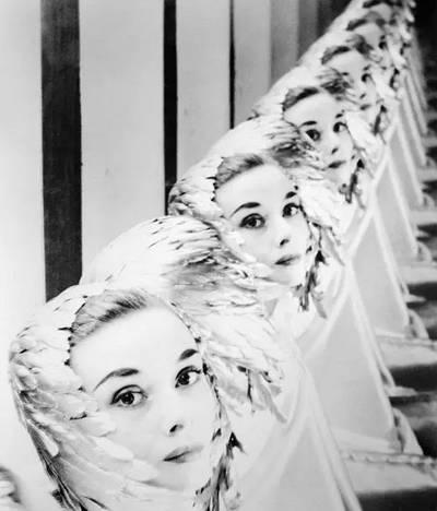 清纯靓丽典雅女神——赫本的一组罕见绝版美照 - 轻舟夜行 nzyllh - 轻舟夜行