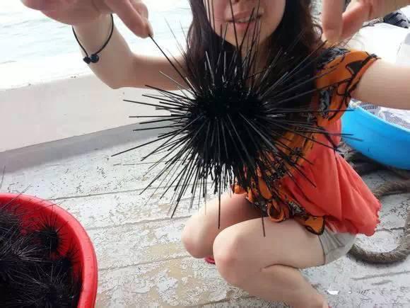 史上最全海鲜大全,以后不怕不认识海鲜了 - ddmxbk - 木香关注家庭教育