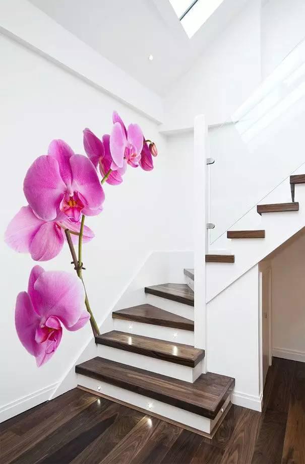 家里这样弄,太美了,实在是太美了!,家里,太美,搬进,可以,茂林修竹,美图分享