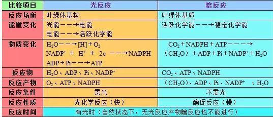 生物知识结构图汇总_青竹