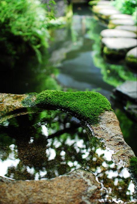 【黑森林杂谈】——浅谈日式园林的发展历程与