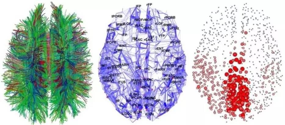 重磅 詳細解讀神經網路十大誤解,再也不會弄錯它的工作原理