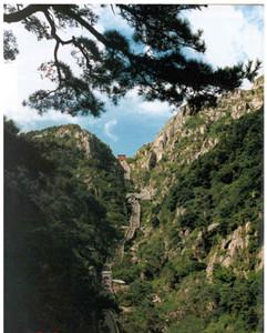 中国175个AAAAA级景区,你去过了其中20个吗? - xiaowei - 春天里的迎春花