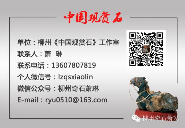 分享...... - 萧琳 - 柳州奇石 萧琳