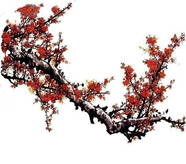 【美图】搧情的梅兰竹菊! - 爱君 - 爱君小屋
