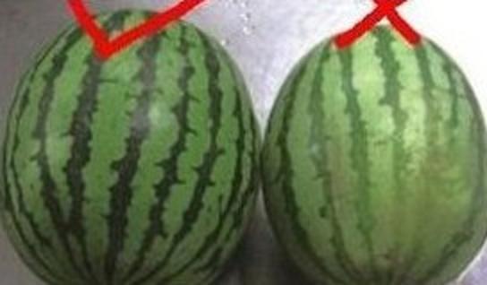 卖了13年的水果贩子教你怎么挑好水果!绝对实用。