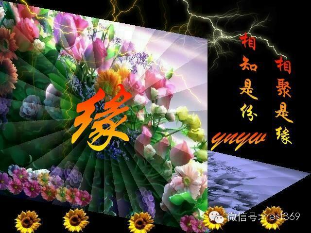 祝福您快乐每一天 - 张绍鸾 - 张绍鸾的博客