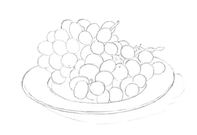 一学就会 葡萄的素描画法,还不会的收藏了图片