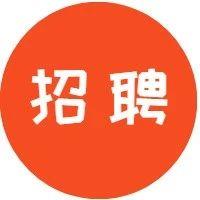 【深圳晚报】【刺猬公社】【散打家族】招人啦!