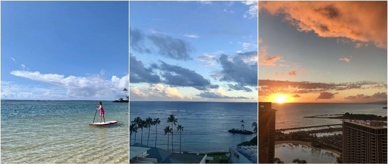 游记 | 星星、大树和鲸鱼,谁会不爱夏威夷