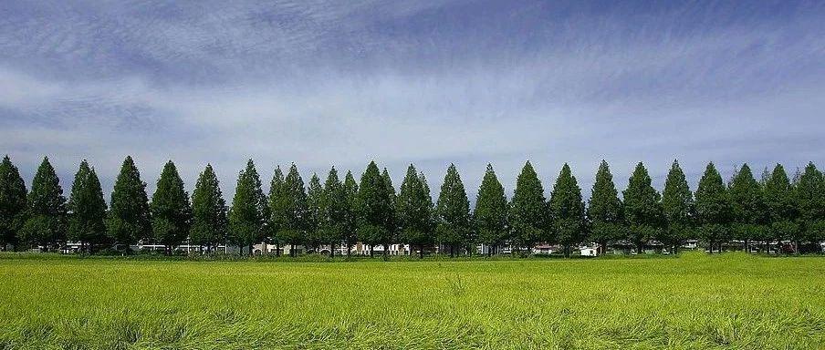 国家林业和草原局第六届科技委成立