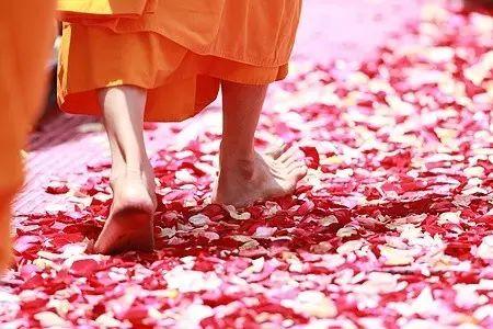 【健康】经常步行的女人,最终会这样!