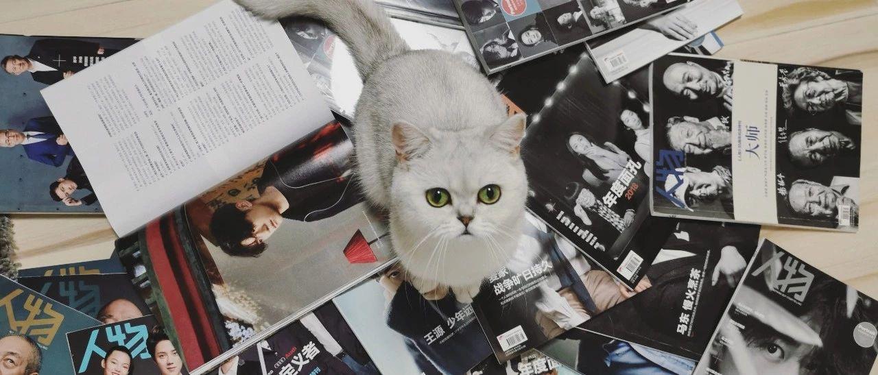 猫什么都知道