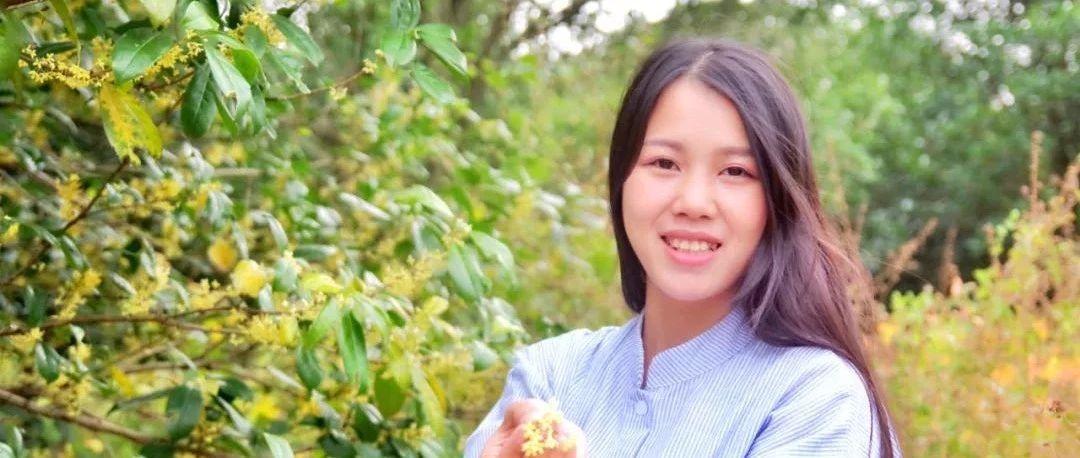 淘宝店年售10吨桂花,90后姑娘月入50万欲环游世界