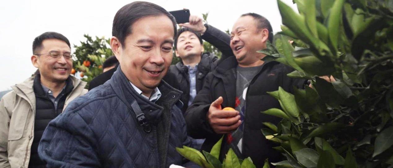 """逍遥子在重庆的两次""""创业"""""""