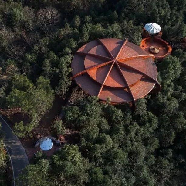 飞碟,安徽齐云山自由家树屋 / 境澜建筑设计