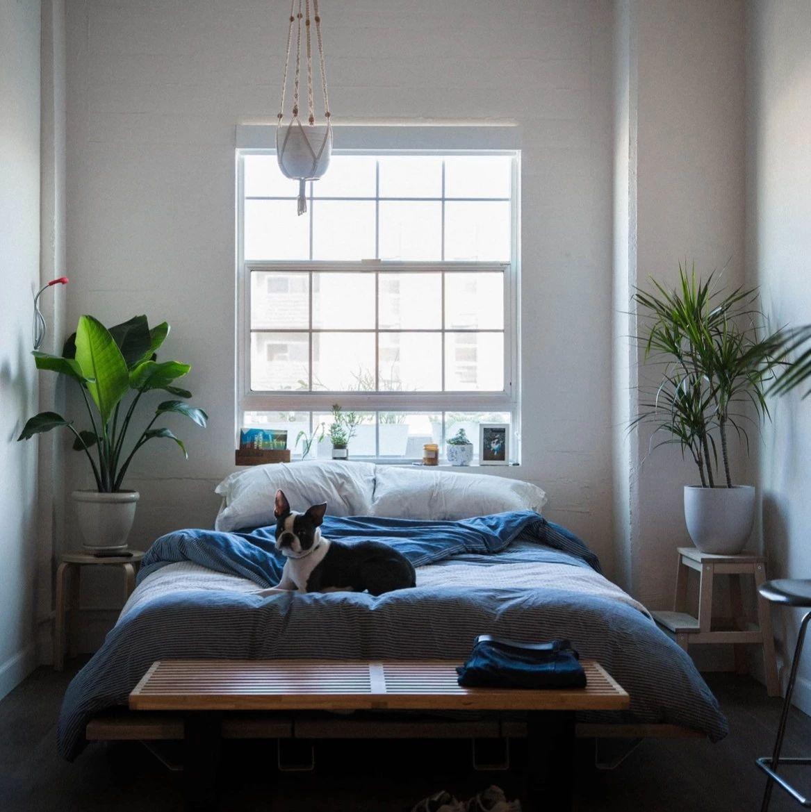 如何租到一套满意的房子?这些是我们的经验