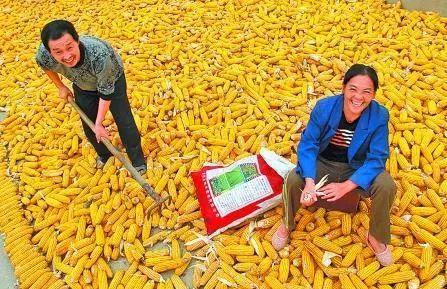 """中国农民丰收节""""设立,你还在质疑的时候,别人看到的是"""