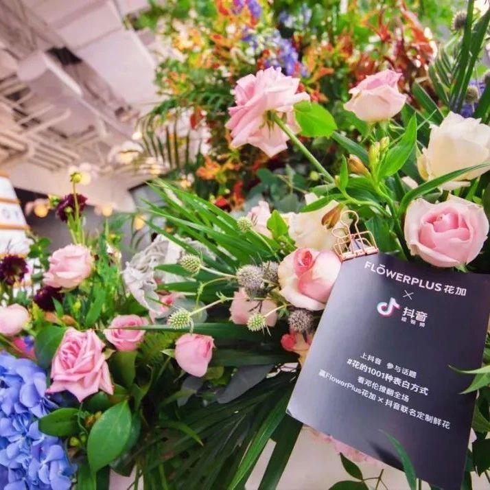 鲜花电商「Flowerplus 花加」完成 3500 万元 B1 轮融资,今年上半年已实现盈利 | 早起看早期