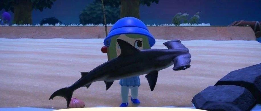 动森里的双髻鲨,脑袋为啥长成个锤子?