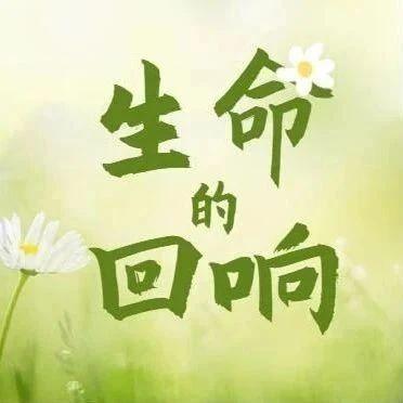 盼春归  《生命的回响》激情唱响!