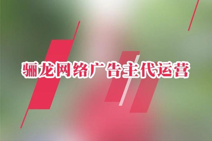 骊龙网络广告主代运营