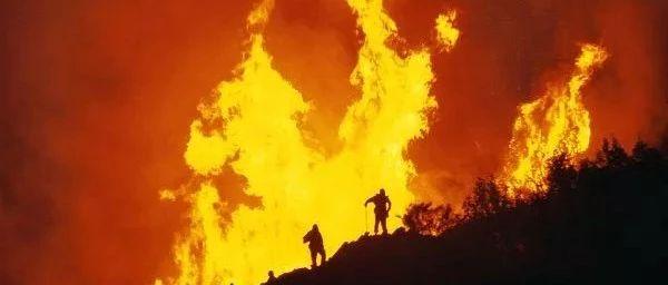 71人死亡,30万人无家可归,天堂瞬间变炼狱!这场大火背后的原因值得反思......