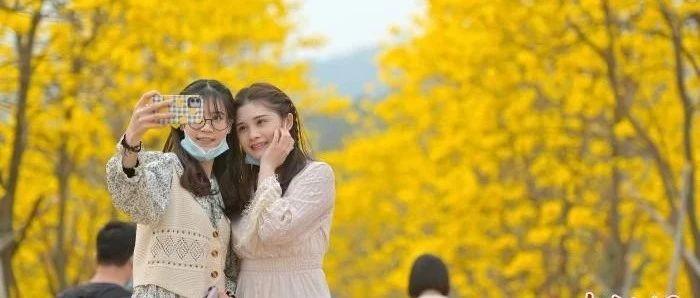 最新中国十大最具幸福感城市出炉,南宁上榜