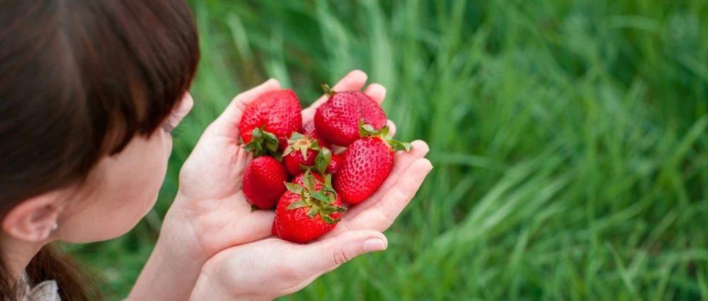春天的6种营养果!再不吃就晚咯