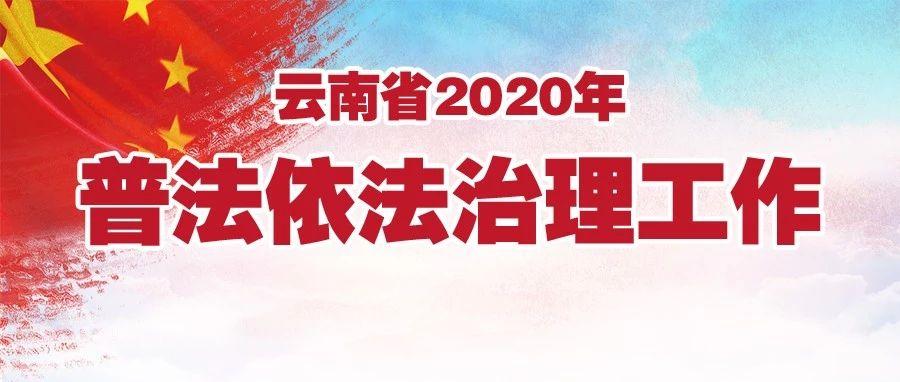 云南省2020年普法依法治理工作要点发布  为决胜全面建成小康社会营造良好法治环境