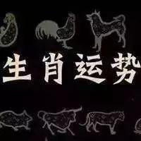 明日运势-亥猪(1.9)