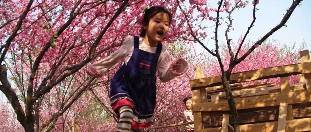 中国第一部00后成长纪录片,在央视大火:新一代终于不再争着赚钱、买房
