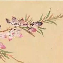 诗词会|描写春节的诗句50首,过年顺口而出!