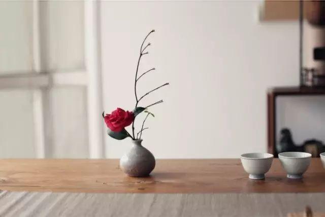 开卷有益——人生如碗(非常精辟!) - 小荷 - 小荷的博客