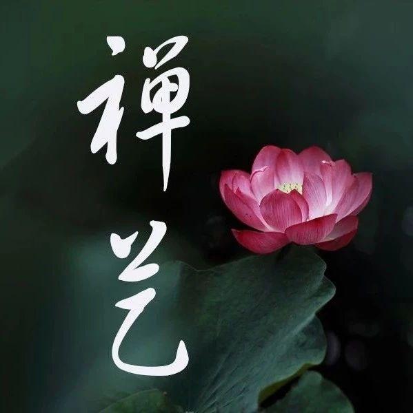 电影《禅》:日本曹洞宗开山祖师道元禅师的故事