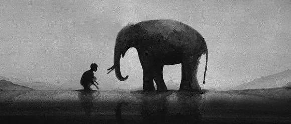 那年,我被迫杀死一头大象