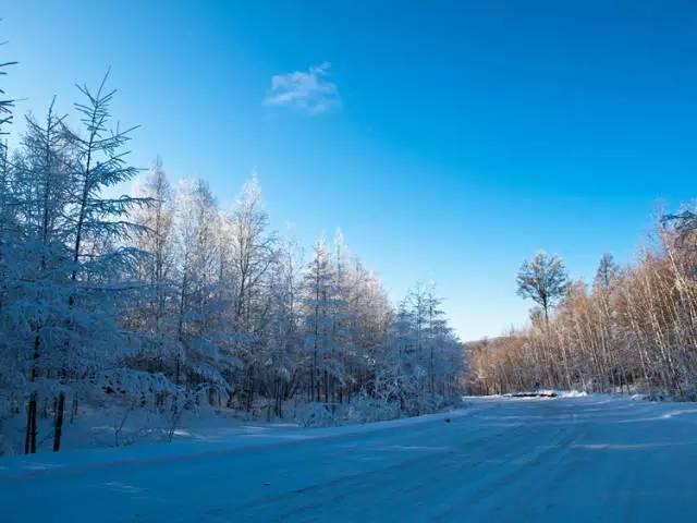 當呼倫貝爾大草原進入了冬季,就是長達七個月、質純少汙染、美得令人屏息的冰天雪地。