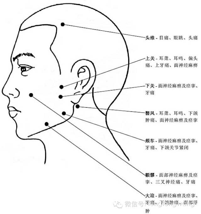 [轉載]完整的人體穴位圖及功效