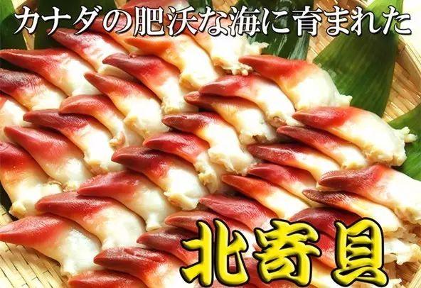 哈哈哈又被騙了!你吃到的「北極貝刺身」,都是煮熟的!