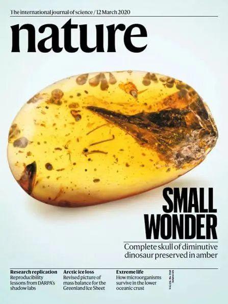学术论文岂能一撤了之!中国学者首次撤回《Nature》封面文章引关注