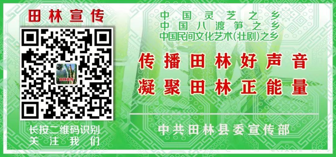 """""""百色讲坛――虚拟现实技术与产业发展""""专题讲座开讲"""