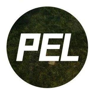 PEL S3创新跨界合作见证紫金王朝,NV腾讯视频战队勇夺赛季冠军