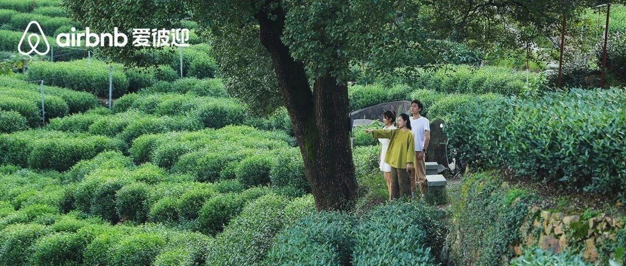 奇妙民宿03 l 在西湖边,发现藏身700亩茶园中的城市秘境