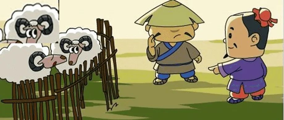 失踪的羊,岂是补牢就能解决