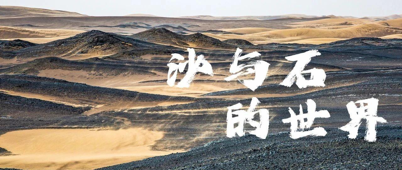 12%的苍茫中国