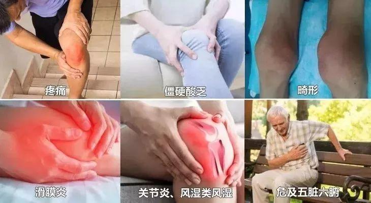 艾草加一物,缓解长年膝盖痛,5分钟见效,10分钟驱赶寒气!
