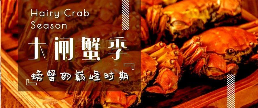 每天都吃一只大螃蟹!不为别的,就为了对得起这个秋天!