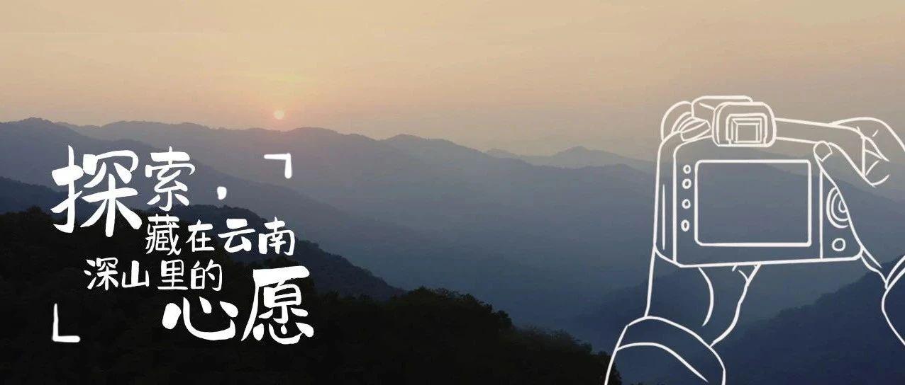 太想知道它们背后的故事,所以我们去了趟云南
