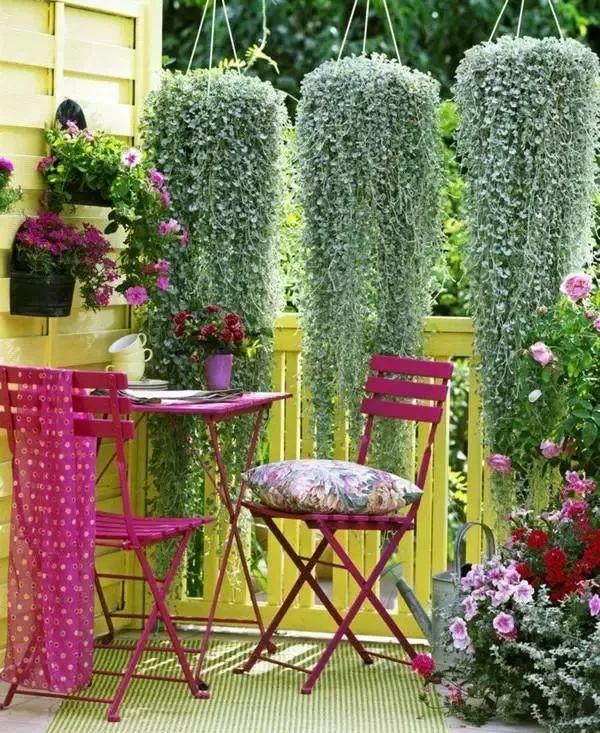 阳台就是要这样布置,养花和晾衣一个都不耽误!