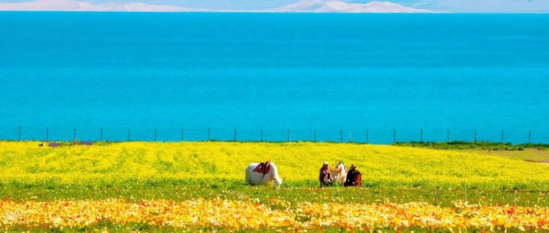 中国湖泊,散落神州的宝石